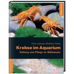 Krebse im Aquarium als Buch von Chris Lukhaup/ Reinhard Pekny