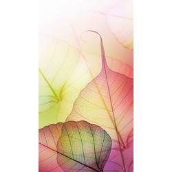 Fototapete »Pink Design«, Tapeten, 24880321-0 bunt Maße (B/H): (144/260 cm) bunt