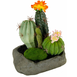 Kunstpflanze Kakteen Kakteen, I.GE.A., Höhe 19 cm
