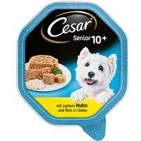 Cesar Senior 10+ Huhn & Reis in Gelee 24 x 150 g