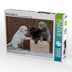 Labrador Welpen Trio Lege-Größe 64 x 48 cm Foto-Puzzle Bild von Heidi Bollich Puzzle