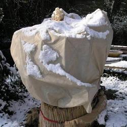 Mulchvlies Universalvlies Wintervlies 1,5x100m