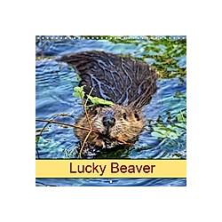 Lucky Beaver (Wall Calendar 2021 300 × 300 mm Square)