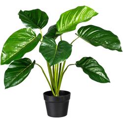 Künstliche Zimmerpflanze Philodendron Philodendron, Creativ green, Höhe 65 cm