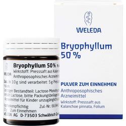 BRYOPHYLLUM 50% Pulver zum Einnehmen 50 g