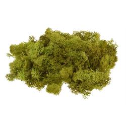 VBS Moos Island, 100 g grün