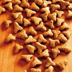 alsa-nature Delicate Trockenfutter, 4 x 1,5 kg, Katzenfutter trocken