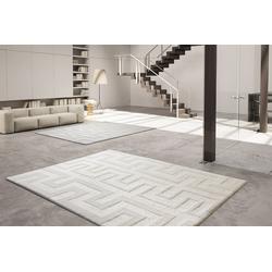 Designer Teppich Le Calli 160x230 cm h23401