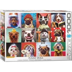empireposter Puzzle Lustige Hunde von Lucia Heffernan - 1000 Teile Puzzle Format 68x48 cm, 1000 Puzzleteile