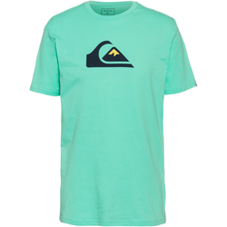 Quiksilver T-Shirt Herren in cabbage, Größe S cabbage S