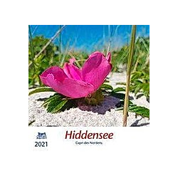 Hiddensee 2021