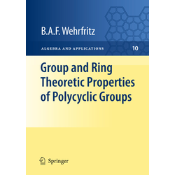 Group and Ring Theoretic Properties of Polycyclic Groups als Buch von B. A. F. Wehrfritz