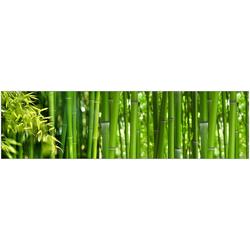 Küchenrückwand - Spritzschutz profix, Bambus, 220x60 cm grün