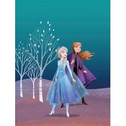 Komar Poster Frozen Sisters, Disney 30 cm x 40 cm