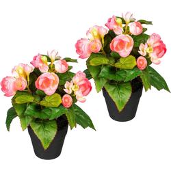 Künstliche Zimmerpflanze Eleonore Begonien, DELAVITA, Höhe 24 cm, 2er Set rosa