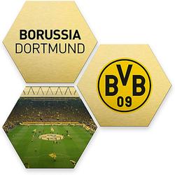 Hexagon - Alu-Dibond-Goldeffekt - BVB - bunt (3er Set) gold