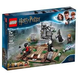 Der Aufstieg von Voldemort?