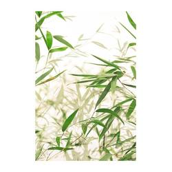 Komar Poster Bamboo Leaves, Pflanzen, Blätter, Höhe: 50cm 40 cm x 50 cm