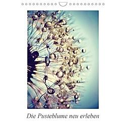Die Pusteblume neu erleben (Wandkalender 2021 DIN A4 hoch)