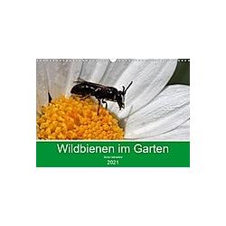 Wildbienen im Garten (Wandkalender 2021 DIN A3 quer)