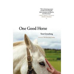 One Good Horse als Buch von Tom Groneberg