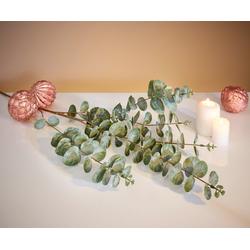 Kunstpflanze Eukalyptus, HomeLiving