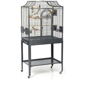 Sittichkäfig Vogelkäfig Vogelbauer Voliere Madeira I Antik von Montana Cages