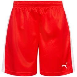 DHF Dänemark PUMA Damen Handball Shorts 750674-01 - L