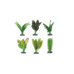 Seidenpflanzen sehr gute Nachbildungen aus dem Congo XS