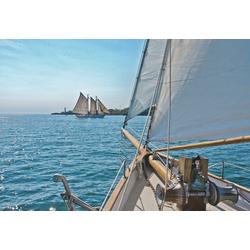 Komar Fototapete Sailing, (8 St)