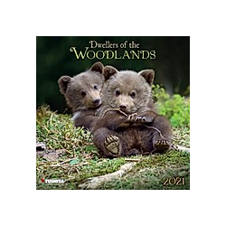 Dwellers of the Woodlands 2021