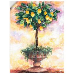 Artland Wandbild Zitronenbaum, Bäume (1 Stück) 30 cm x 40 cm