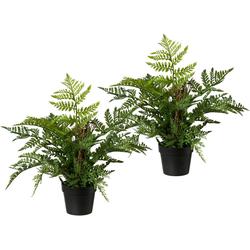 Künstliche Zimmerpflanze (2 Stück), Kunstpflanzen, 89293824-0 grün H: 40 cm grün