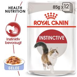 ROYAL CANIN INSTINCTIVE Katzenfutter nass in Gelee 12x85g