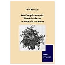 Die Farnpflanzen der Gewächshäuser. Otto Bernstiel  - Buch
