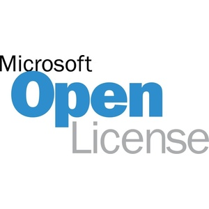 MS OPEN-GOV Word 2019 Government OLP 1License