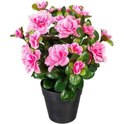 Künstliche Zimmerpflanze Annelie Azalee, my home, Höhe 26 cm rosa