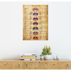 Posterlounge Wandbild, Bedeutung der Chakren 100 cm x 130 cm