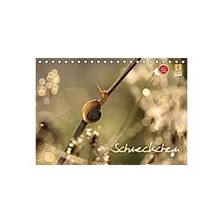 Schneckchen (Tischkalender 2021 DIN A5 quer) - Kalender
