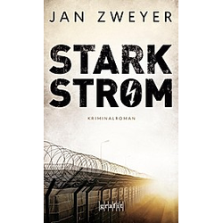 Starkstrom. Jan Zweyer  - Buch