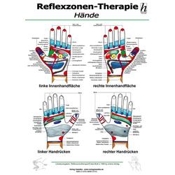 Reflexzonen-Therapie Mini-Poster - Hände DIN A4