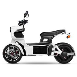 Doohan eGo2 Elektroroller E-Scooter-Trike, blau