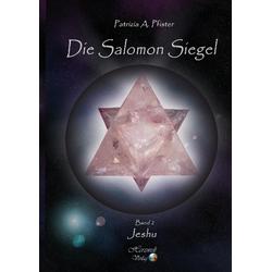 Die Salomon Siegel als Buch von Patrizia A. Pfister