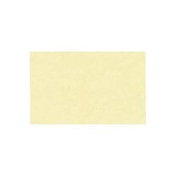 Fotokarton 300g/qm A4 VE=50 Blatt vanille