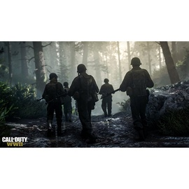 Call of Duty: WWII (USK) (PS4)