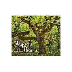 Magische Bäume 2021