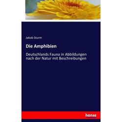 Die Amphibien als Buch von Jakob Sturm