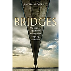 Bridges. David Blockley  - Buch