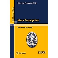 Wave Propagation - Buch
