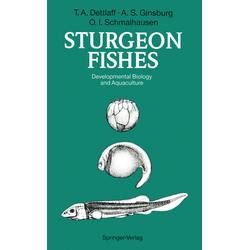 Sturgeon Fishes als Buch von Tatiana A. Dettlaff/ Anna S. Ginsburg/ Olga I. Schmalhausen